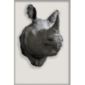 Javan Rhino Head Cast