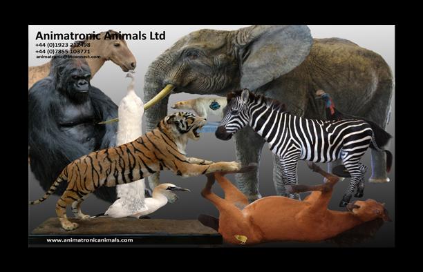 Animatronic Animals Ltd